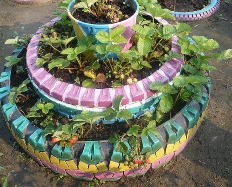 Выращивание клубники в шинах вертикально 7
