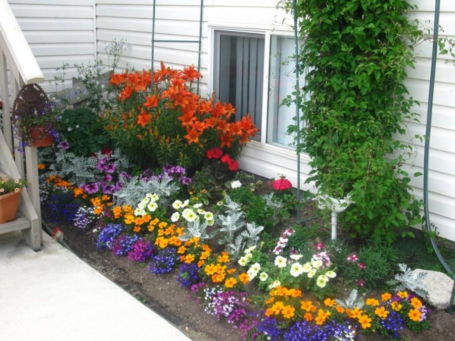 Цветы на даче своими руками с фото