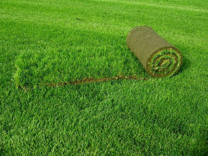 Укладка искусственного газона своими руками с фото структура 86