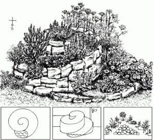 spiralnye-klumby-spiralnye-gryadki-kak-sdelat-svoimi-rukami-2