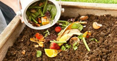 kompostnaya-yama-izgotovlenie-kompostnoj-yamy-svoimi-rukami