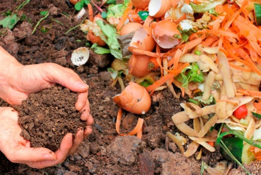 kompostnaya-yama-izgotovlenie-kompostnoj-yamy-svoimi-rukami-1525