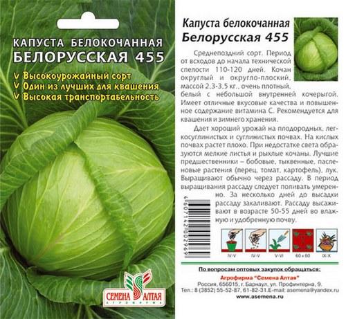 kapusta-belorusskaya-foto-opisanie-sorta-vyrashhivanie-otzyvy-1