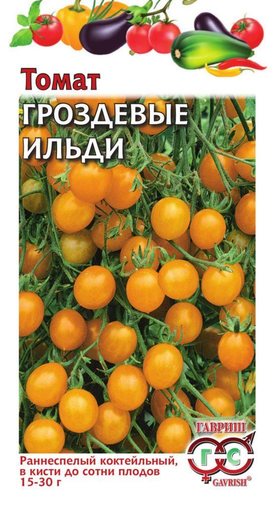 luchshie-novye-sorta-pomidor-tomaty-dlya-teplitsy-i-otkrytogo-grunta-012