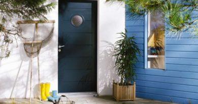 vhodnaya-dver-foto-video-razmery-i-raznovidnosti