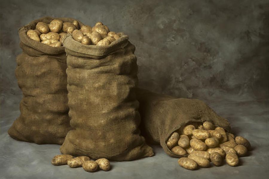 Как сделать ящик своими руками для хранения картофеля зимой