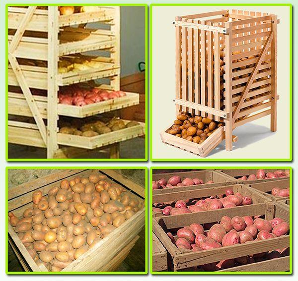 kak-hranit-kartofel-v-pogrebe-v-yashhikah-ili-rossypyu-3