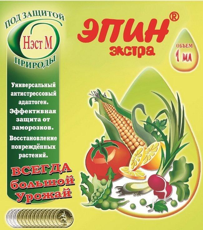 sort-baklazhanov-zhizel-opisanie-sorta-foto-otzyvy-osobennosti-vyrashhivaniya-3