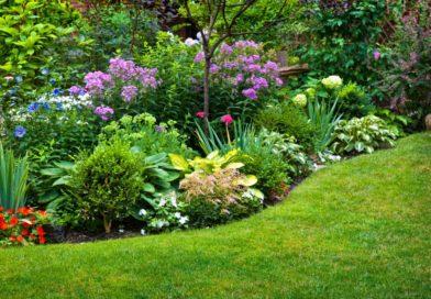 Ритм в ландшафтном дизайне: ритмические приемы для цветников