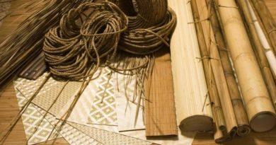 bambukovye-oboi-foto-video-preimushhestva-i-nedostatki