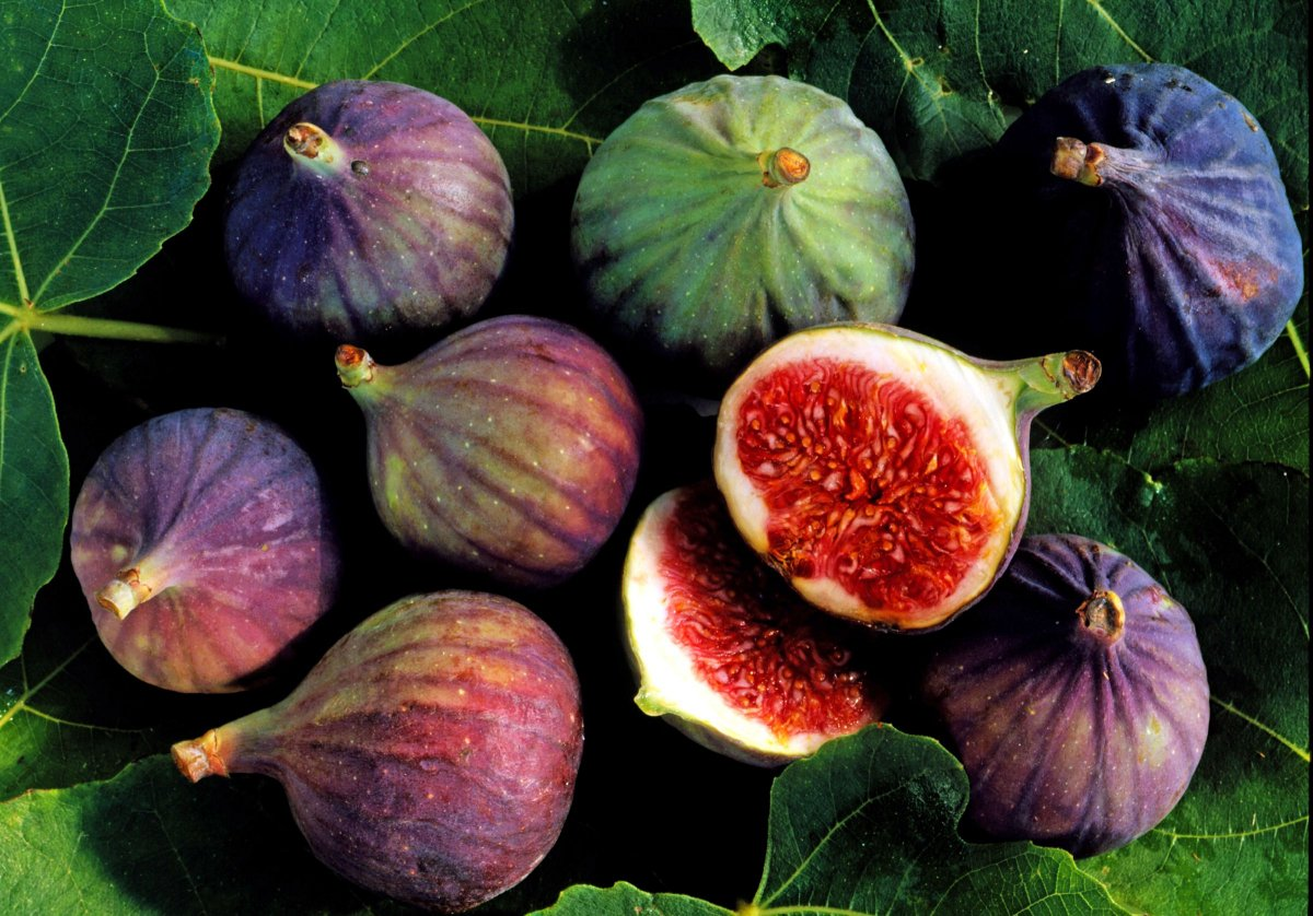 tropicheskie-plody-rastenij-kotorye-my-edim-foto-opisanie-4
