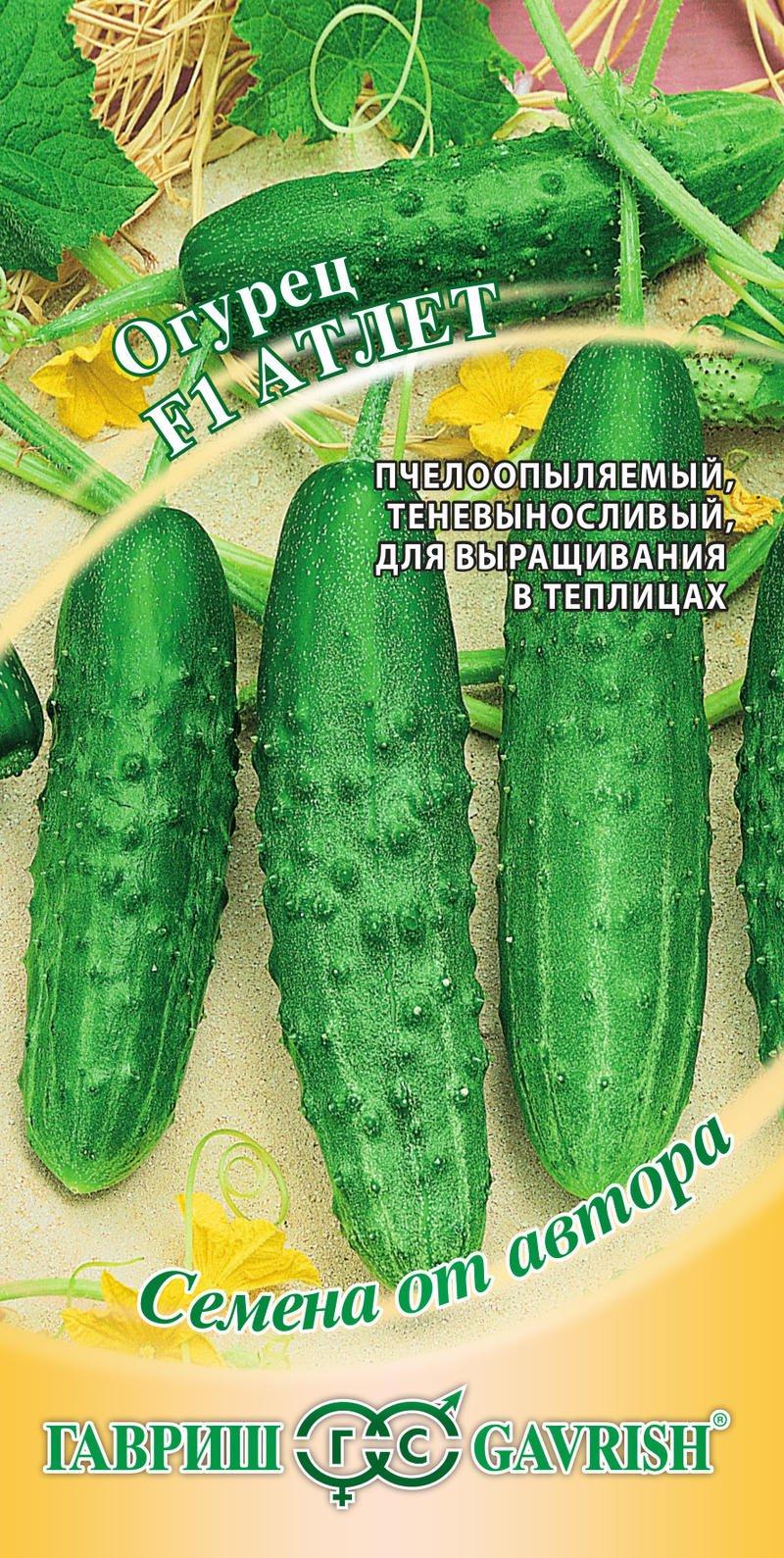 sorta-ogurtsov-dlya-teplitsy-foto-opisanie-harakteristiki-01