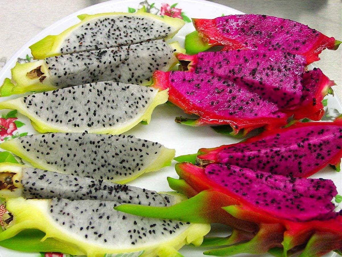 tropicheskie-plody-rastenij-kotorye-my-edim-foto-opisanie-11