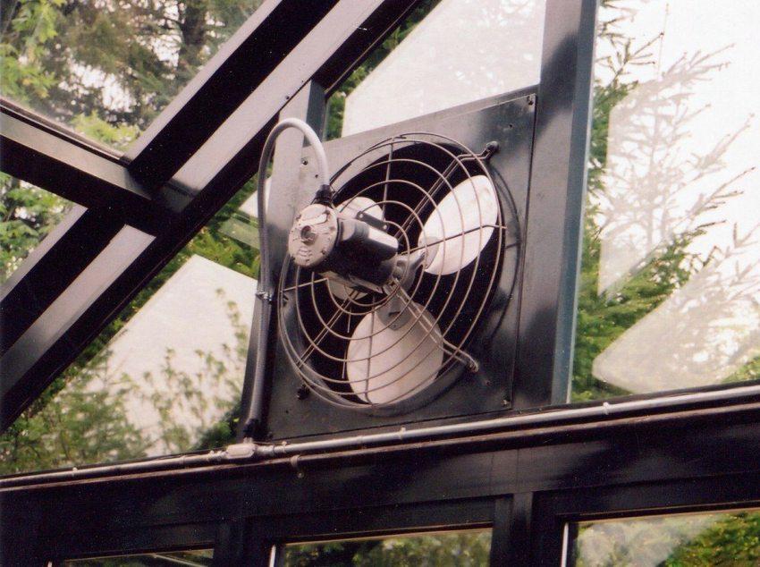 zimnij-sad-na-uchastke-foto-video-raznovidnosti-i-osobennosti-62