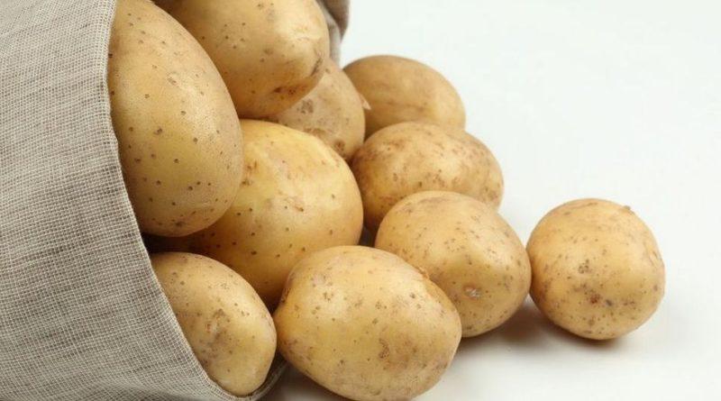 kak-vyrastit-kartoshku-kak-sazhat-i-uhazhivat-za-kartofelem