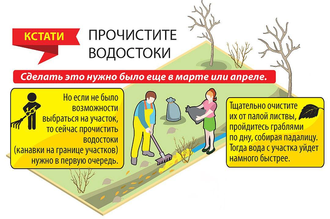 raboty-v-sadu-v-mae-5-vazhnyh-del-na-uchastke-v-majskie-prazdniki-3