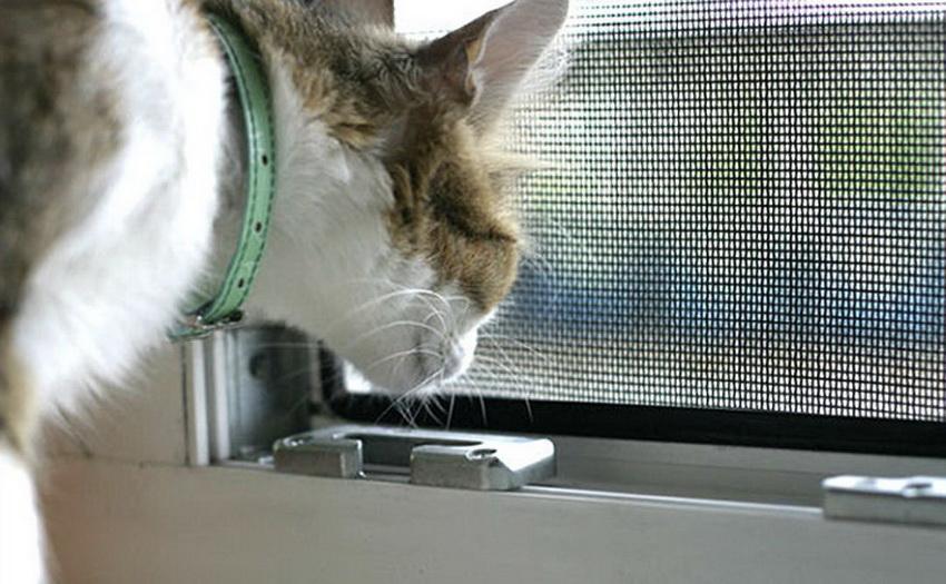 moskitnye-setki-na-okna-foto-video-raznovidnosti-izdelij-20