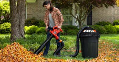 Воздуходувка: фото, видео, как выбрать садовый пылесос