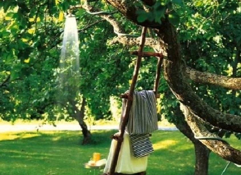 душ на дереве