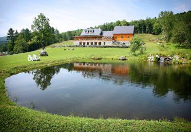 Как создать красивый пруд на даче – советы по обустройству и уходу